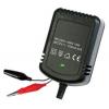 Зарядное устройство Robiton LA12-900